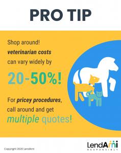Pro Tip Veterinarian Costs